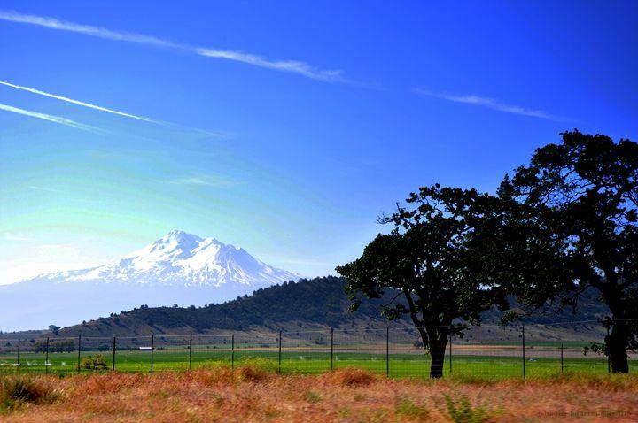 Mt. Shasta - Shirleypix Art & Photography