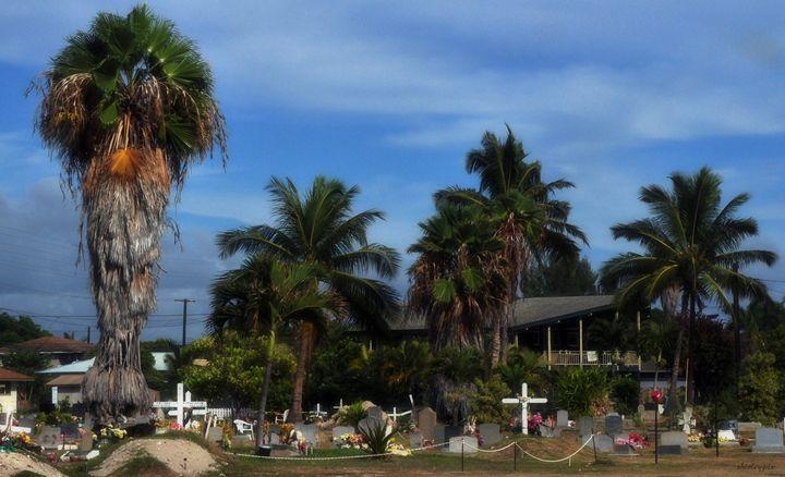 An Hawaiian Way to Remember - Shirleypix Art & Photography