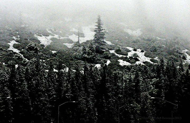 Snow in the hills of California - Shirleypix Art & Photography