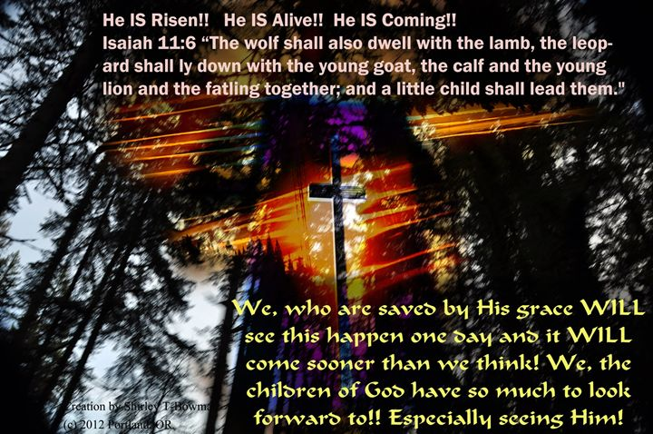 He is Risen! - Shirleypix Art & Photography