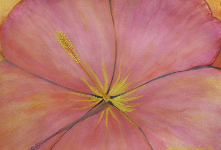 Pink Hibiscus - Darcey Knudsen