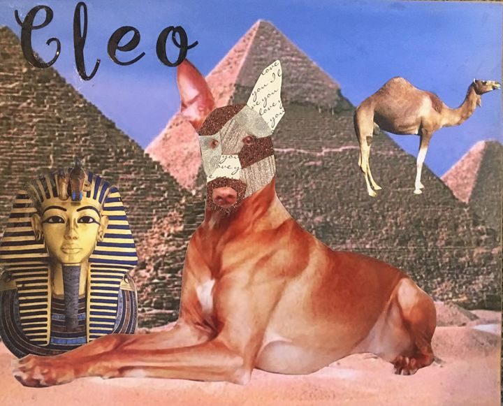 Cleo - Julie Irven