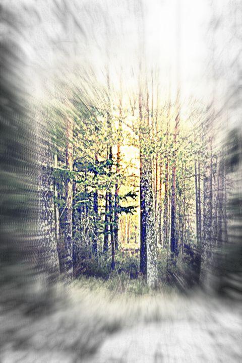 Follow the light - Hilde Widerberg ART