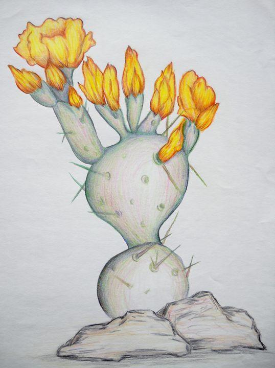 Cactus Flower - Kathryn Watkins
