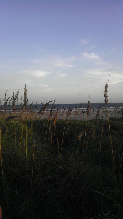 beach - ashley