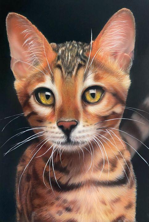 The portrait of a pet - DolgorArt