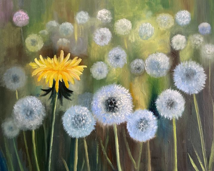Dandelions - Dolgor Art