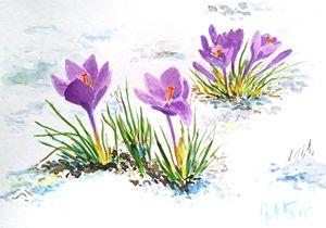 Spring is close - Jovanka Papathanasiou