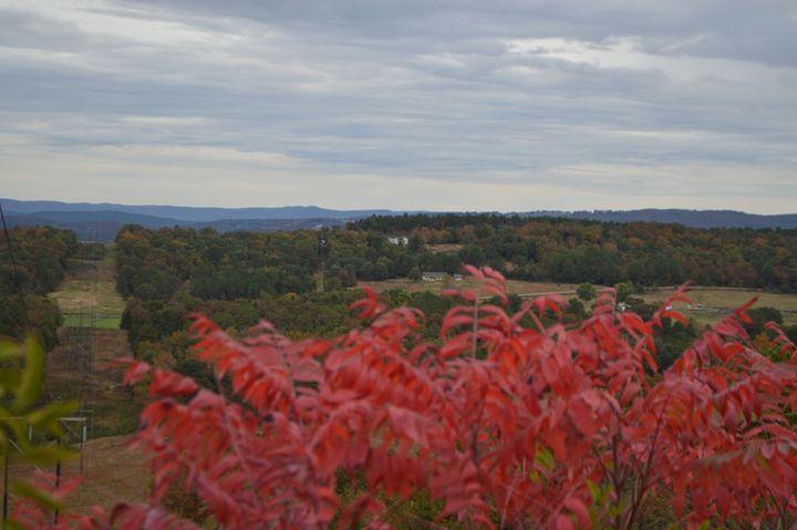 Scenic Overlook - Mountains of Arkansas