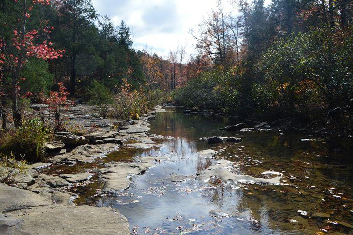 Creek Bed - Mountains of Arkansas