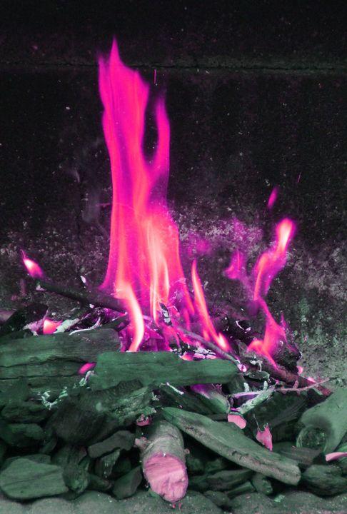 PINK FLAMES - Karine P