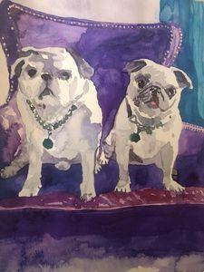 Pugs on Purple Chair
