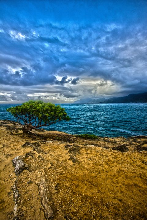 Laie Point - Flat Owl Photography