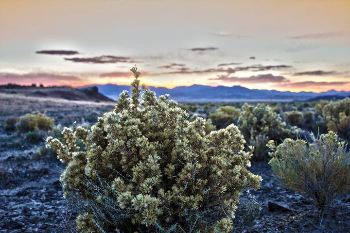 Nevadan Sunset - Flat Owl Photography