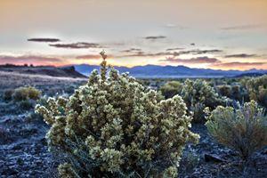 Nevadan Sunset