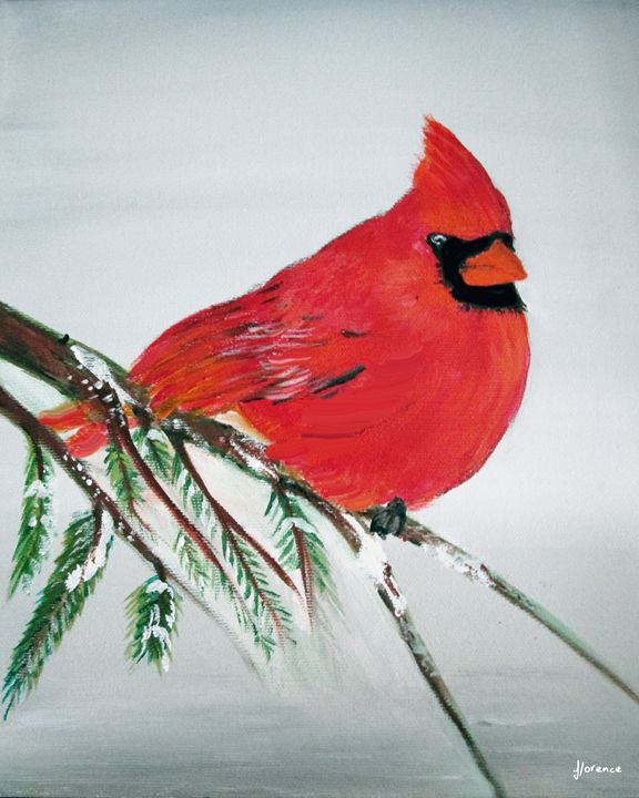 Cardinal - Florence