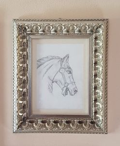 Pencil Drawing of horses head