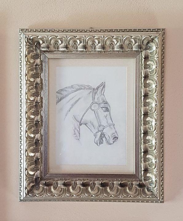 Pencil Drawing of horses head - ART Prints, paintinga & drawings