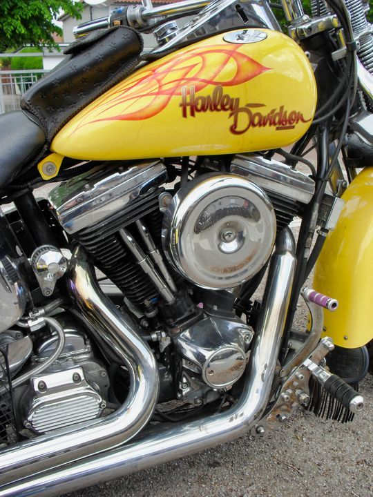 Yellow Harley Trike - TerryficArt