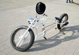 Custom Bicycle in Doncaster