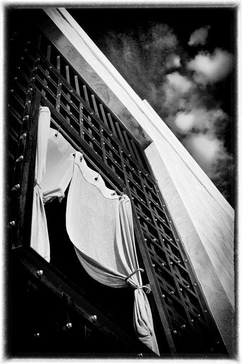 up.... - bluzARTphotography