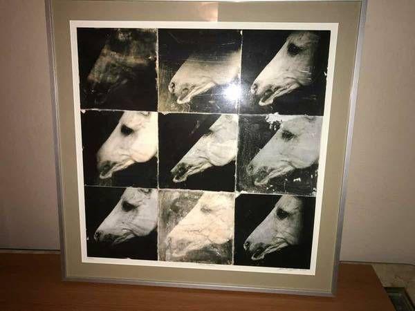 Nine Horses - Gallery