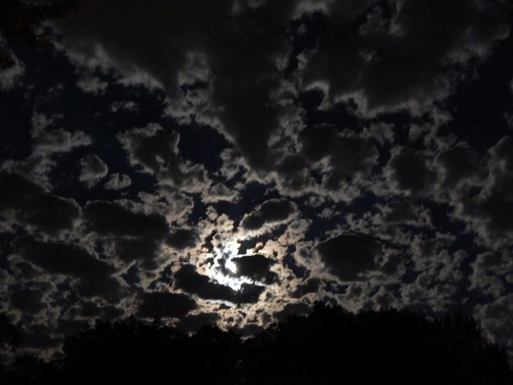 Sky full of moonlit clouds - Michelle Stern Photography