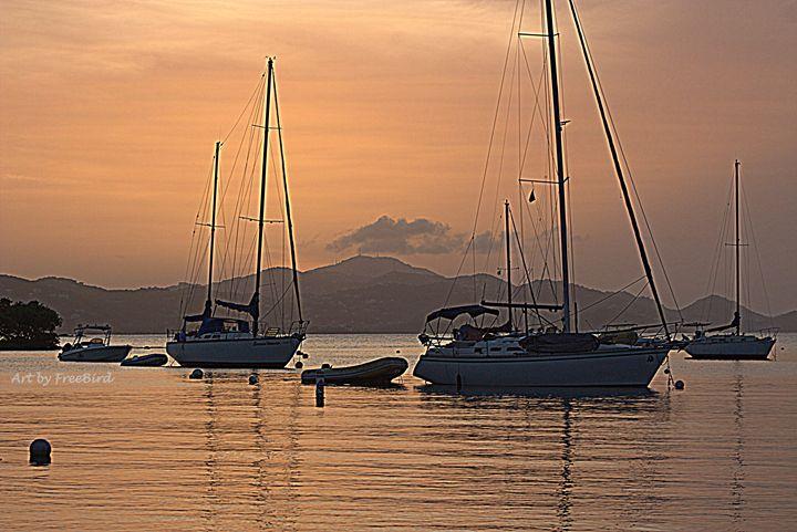 Cruz Bay Orange - Art by FreeBird