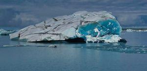 Iceberg off the Bering Glacier.