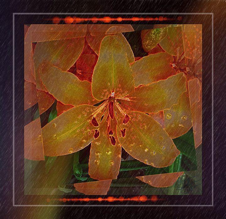 Lily Expressed - Snakeskinner Designs