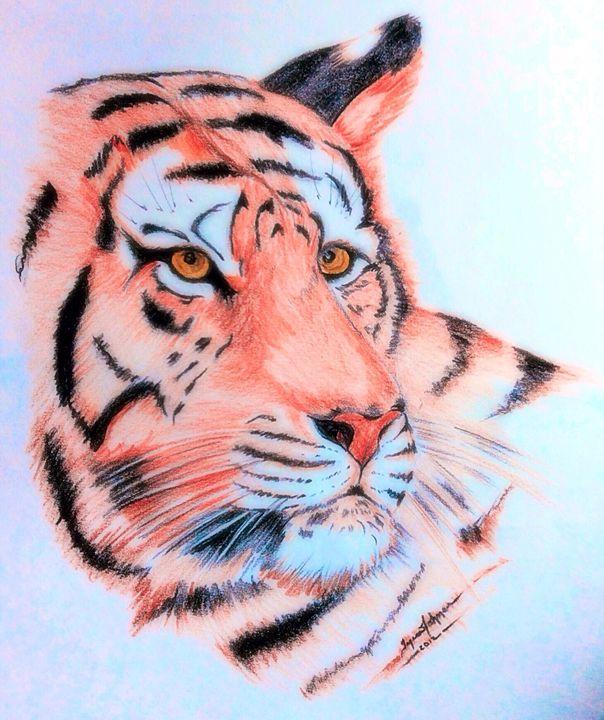 Tiger - Snakeskinner Designs