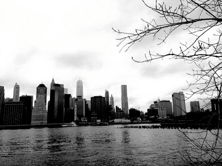 New York - Sydney Lohner