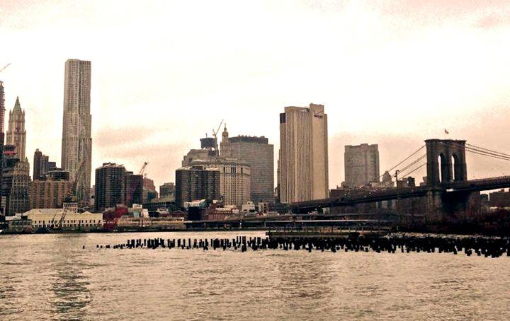New York's Bridge - Sydney Lohner