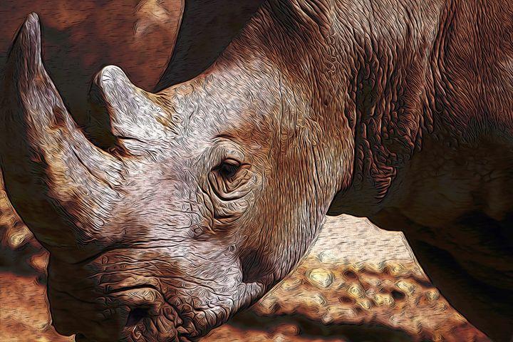 Rhino - Christine Mitchell