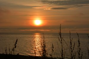 Davis Bay Sunset