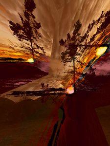 Sechelt Tree - Elaine Hunter