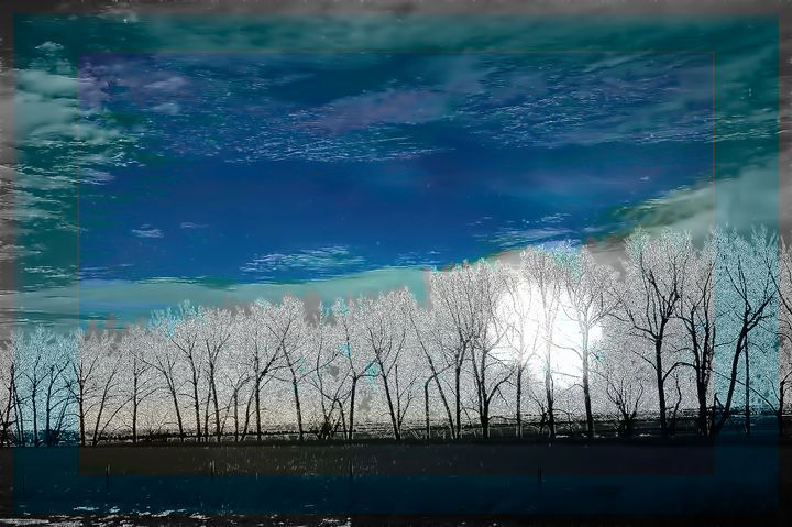 Highway trees - Elaine Hunter