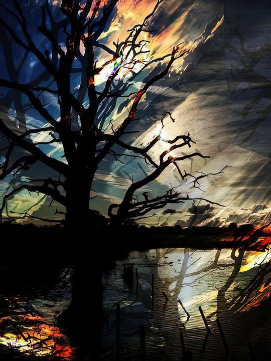 Tree by the Lake , UK. - Elaine Hunter