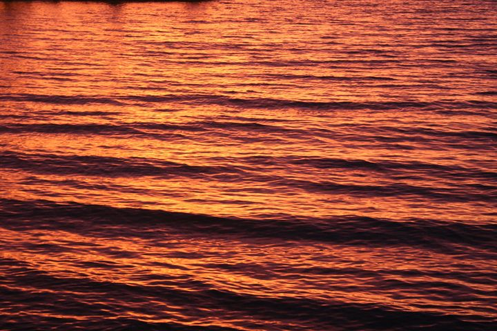 Sunset Waves - Art KalleCat