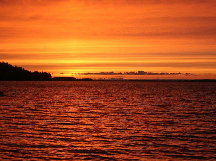Red Sunset - Art KalleCat