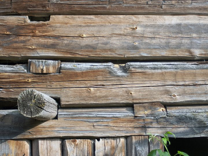 Old Log Wall 2 - Art KalleCat