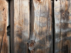 Old Log Wall 3