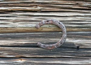 Old Horseshoe