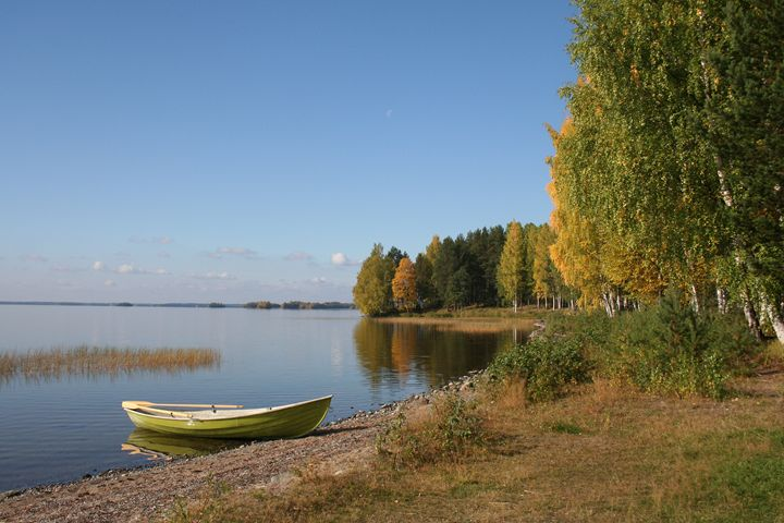 Autumn and Lake - Art KalleCat