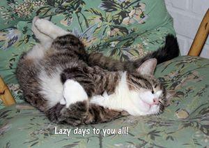 Kitty's Lazy Days - Art KalleCat