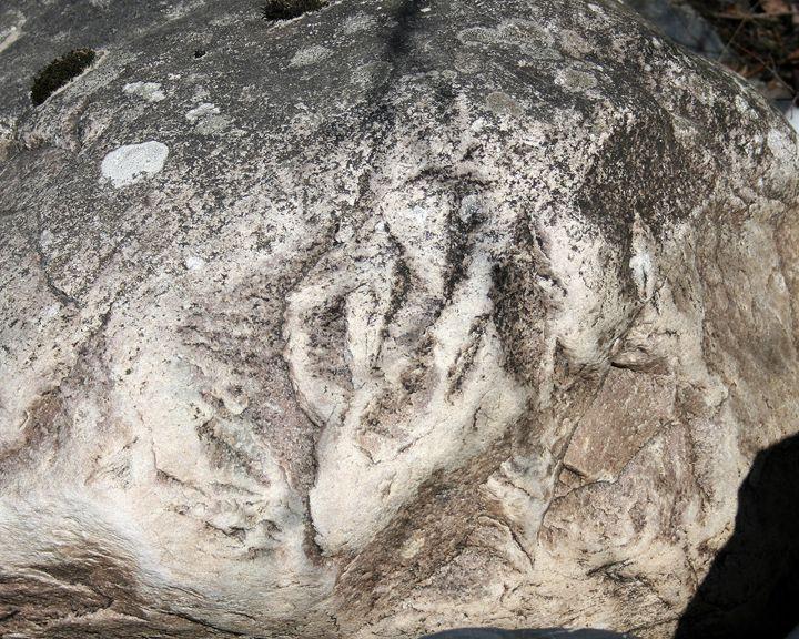 Stone Wolf - Art KalleCat