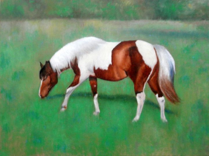 Painted Horse in Pasture - Kirk Kerndl