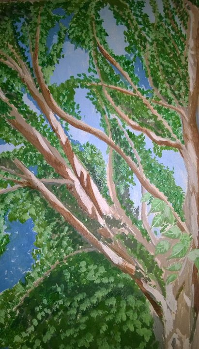 A sunlit tree - Sindhu's Paintings