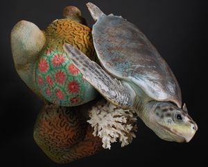 Kemp's Ridley Sea Turtle Reproductio - Carter Animal Art