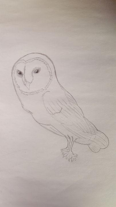 Majestic Owl - Jessica's Art
